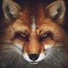 Аватар пользователя SlyFox116
