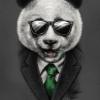 Аватар пользователя Ylitem