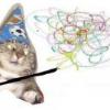 Аватар пользователя Pavv123