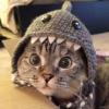 Аватар пользователя Tlenix
