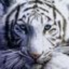 Аватар пользователя SuperMegaPyh