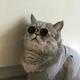 Аватар пользователя Klasix