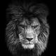 Аватар пользователя Makcumka87