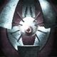 Аватар пользователя xN0D