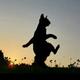 Аватар пользователя TanyaS84