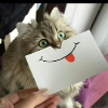 Аватар пользователя Kydlpyh