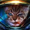 Аватар пользователя PandaForce