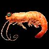 Аватар пользователя Anukabobuzakopoo