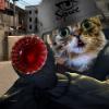 Аватар пользователя Waze
