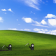 Аватар пользователя AZAONE