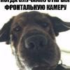 Аватар пользователя Vigarista