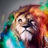 Аватар пользователя RuslanNalsur