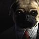 Аватар пользователя Sobake4
