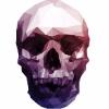 Аватар пользователя Polygonal