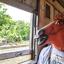 Mr.Horsehead