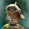 Аватар пользователя EvJess