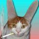 Аватар пользователя Ebutuzik