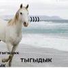 Аватар пользователя Emelya4MO