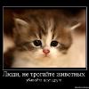 Аватар пользователя NadenkaM