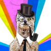 Аватар пользователя QuantuM1o1