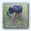 Аватар пользователя PahinX