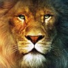 Аватар пользователя Pistevo