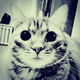 Аватар пользователя Brodskyi