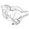 Аватар пользователя Tyranorobushek