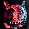 Аватар пользователя budutam