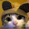Аватар пользователя MilkyWayWay