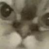 Аватар пользователя kudon