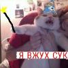 Аватар пользователя Diankova