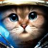 Аватар пользователя Xyenchik
