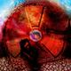 Аватар пользователя NuclearWind