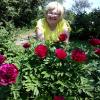 Аватар пользователя skromnaya