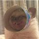 Аватар пользователя DobryiShmell