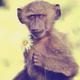 Аватар пользователя Svarka03