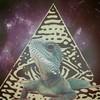 Аватар пользователя Mr.iguana