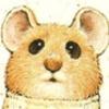 Аватар пользователя mefko