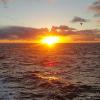 Аватар пользователя Nochka0714