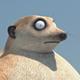 Аватар пользователя commander183