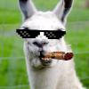 Аватар пользователя CriminalLama