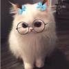 Аватар пользователя Marianna675