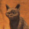 Аватар пользователя Vasylisa