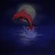 Аватар пользователя NightDolphin