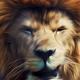 Аватар пользователя Ektrin