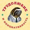 Аватар пользователя Honk