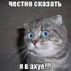 Аватар пользователя De5tr0yeR