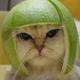 Аватар пользователя SinTX
