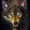 Аватар пользователя MikMik2003